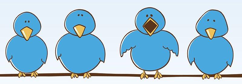 Twitter modifica los retweets- permite añadir 116 caracteres - Oink my God