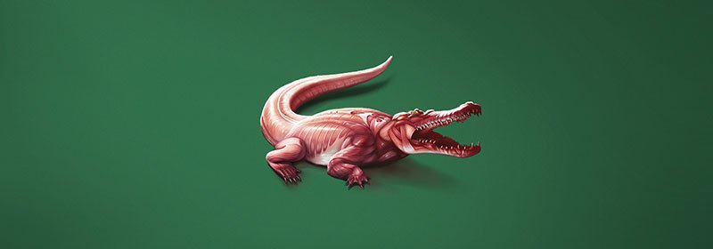 MFW : Sociedade de Notícias - Skinless logos - crocodile - Wear the cause. Fight against animal slaughter.