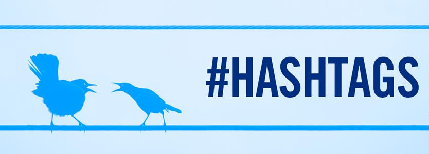 hashtags Twitter con pájaros