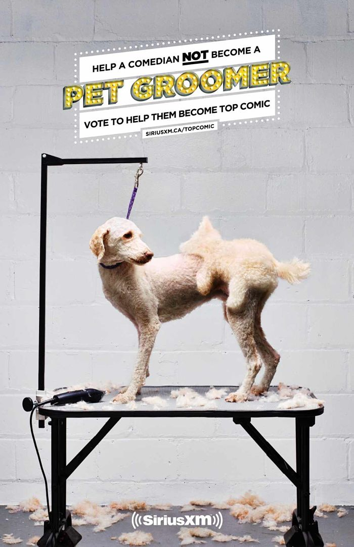 Anuncio de SiriusXM's Top Comic. Perro en la peluquería. Le han hecho un peinado gracioso: le han dejado pelo como si fuera un perro subido a su lomo intentando mantener relaciones sexuales.