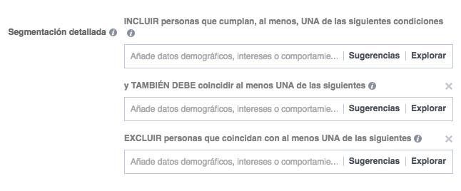Segmentación detallada_intereses