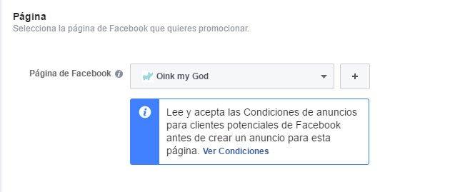 Campaña de Facebook Lead Ads. Seleccionar Página de Empresa