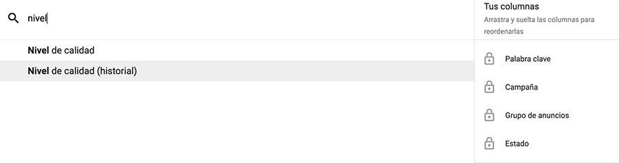 personalizar columnas google ads