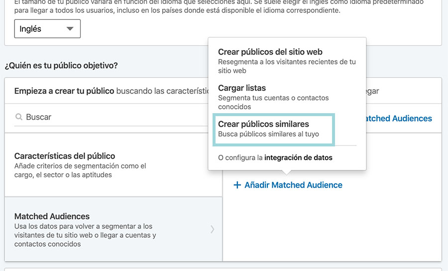 publicos similares linkedin ads
