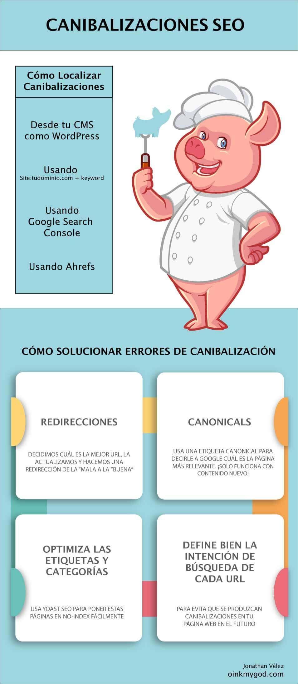 infografia canibalizacion seo palabras clave