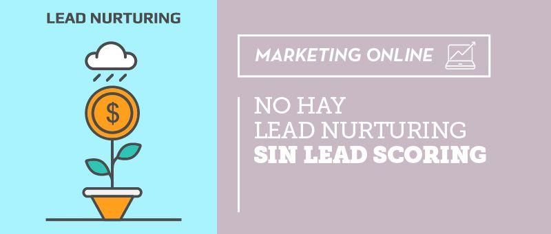 No hay lead nurturing sin lead scoring