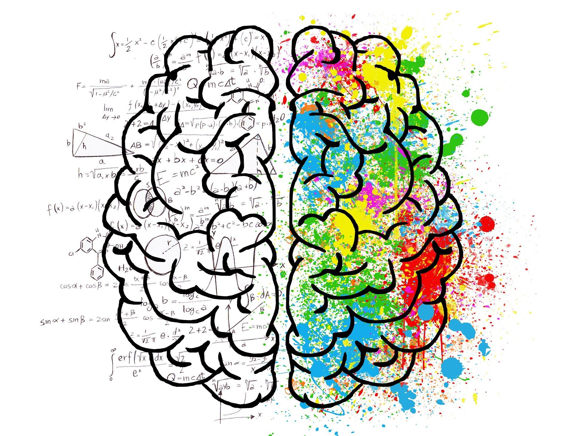 neuromarketing en el cerebro