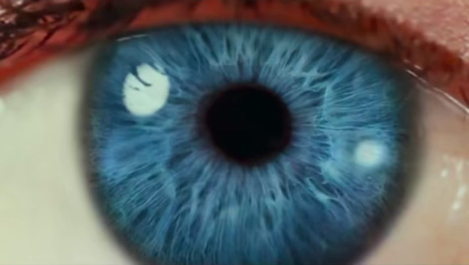 the social dilemma documental ojo