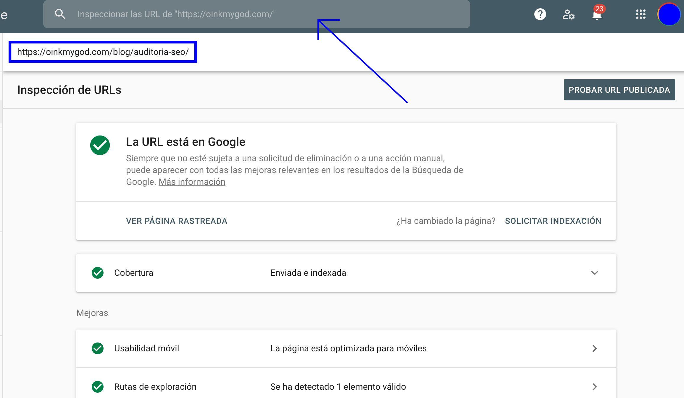Google Search Console inspeccion url