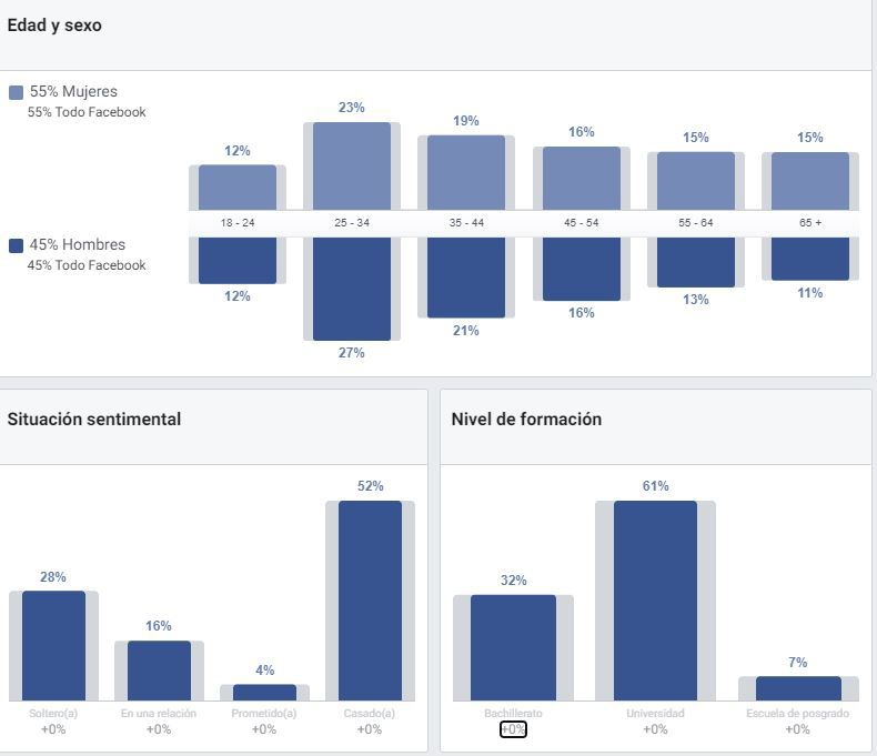 audience insight facebook ads
