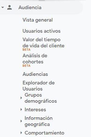 menu audiencia google analytics